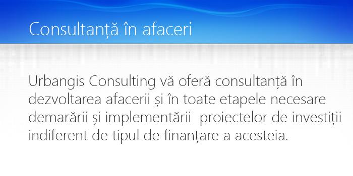 consultanta in afaceri